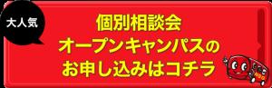 IMG_1386-768x248