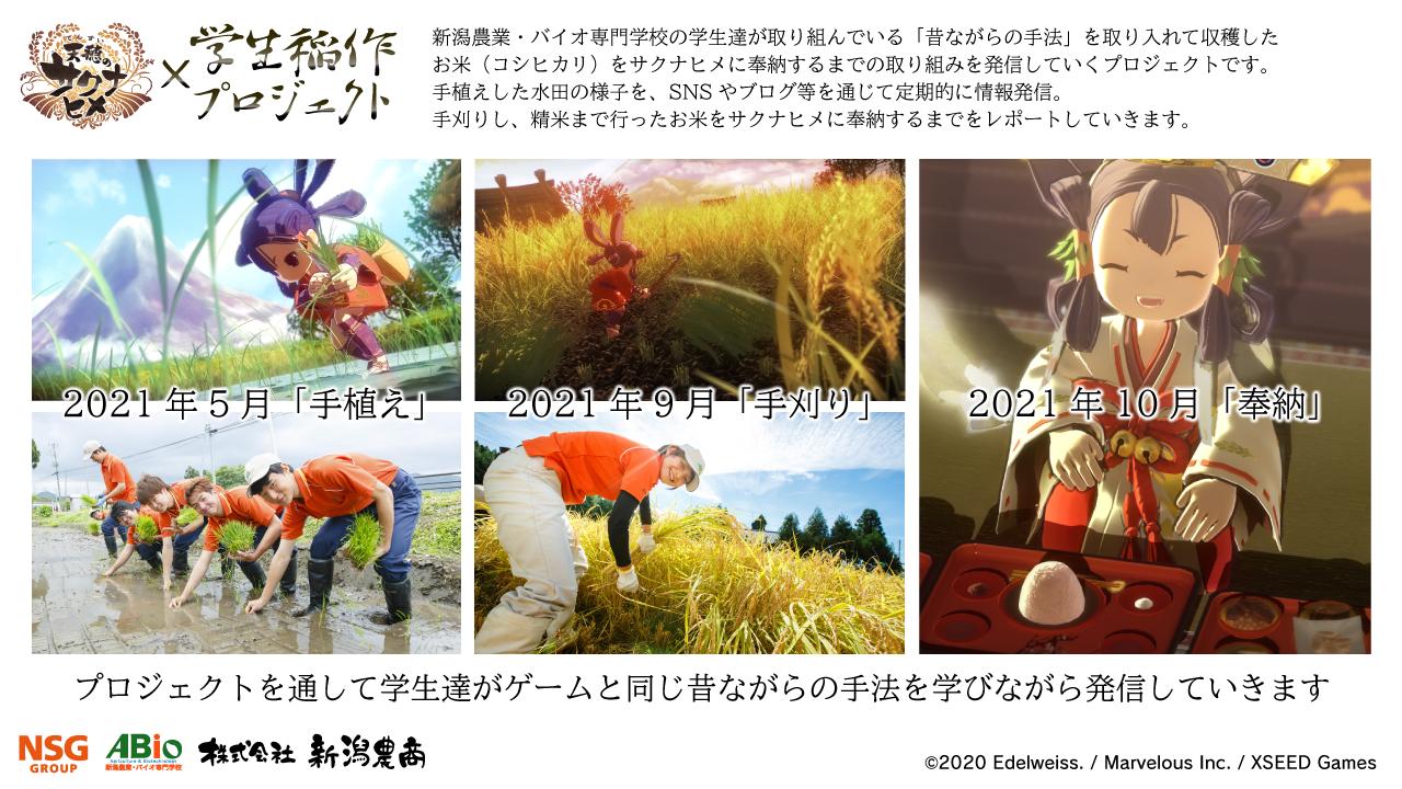 サクナヒメxABio学生稲作プロジェクト_PR画像-2_20210415