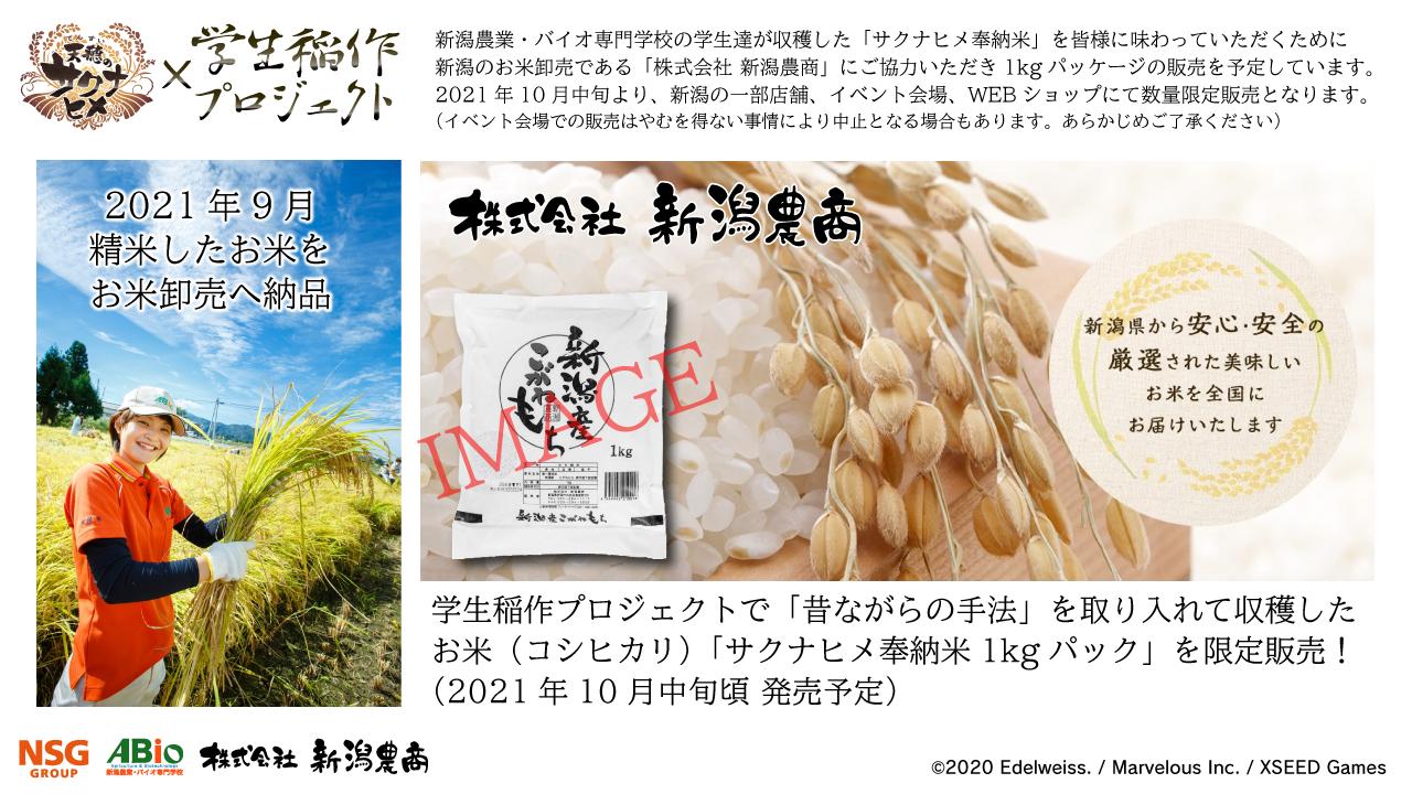 サクナヒメxABio学生稲作プロジェクト_PR画像-3_20210415