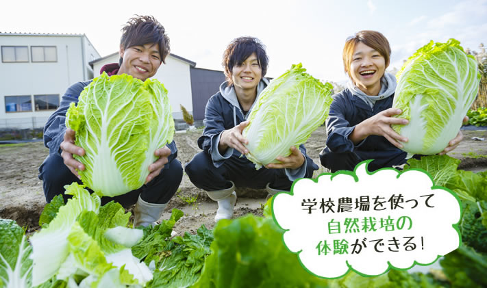 学校農場を使って自然栽培の体験ができる!